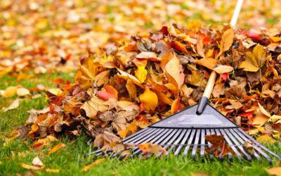 Seasonal HVAC Maintenance– Don't Let Fall Leaves Clog Your System